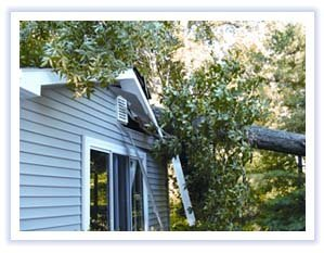 Storm and Wind Damage Repair Plymouth MI - Roof Repair, Tree Removal - MJ White and Son - mjwhite_9